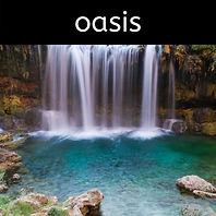 button - oasis.jpg