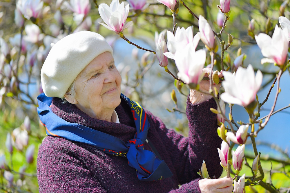 Spring activities for the elderly