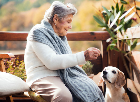 Helping Elderly With Pets