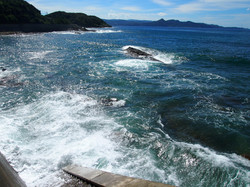 海が近いです