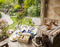ガーデンの朝食