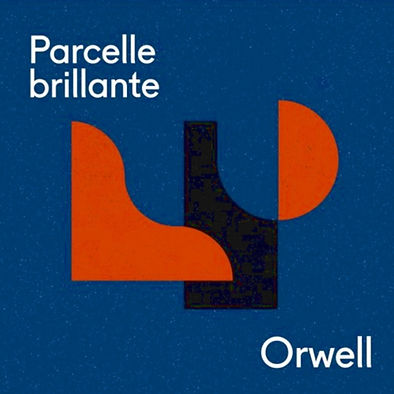 Orwell cover lighter.jpg