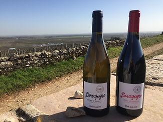 Bourgogne Côtes d'Auxerre Domaine d'Edou