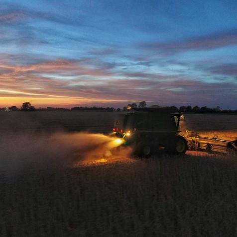 Werner Farms Harvest 2017