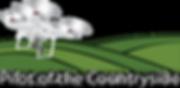 Drone Logo Phantom (Transparent).png
