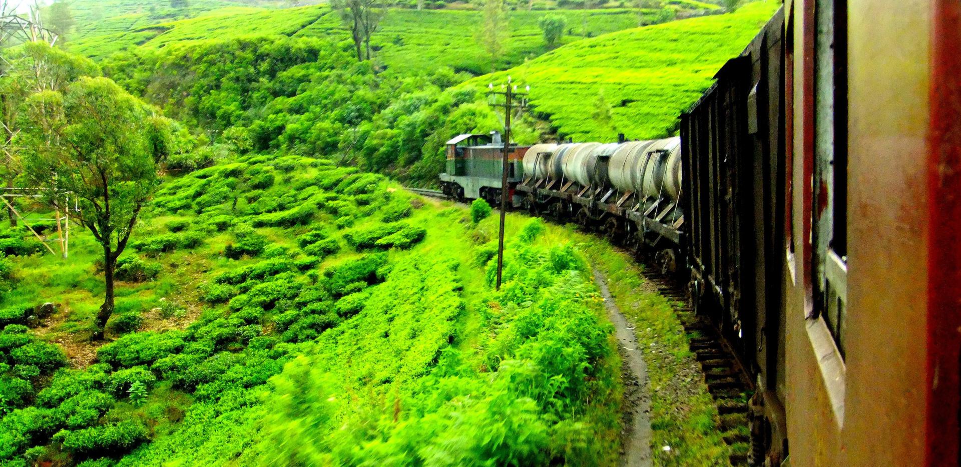 Nuwaraeliya%20Train%20Journey_edited.jpg
