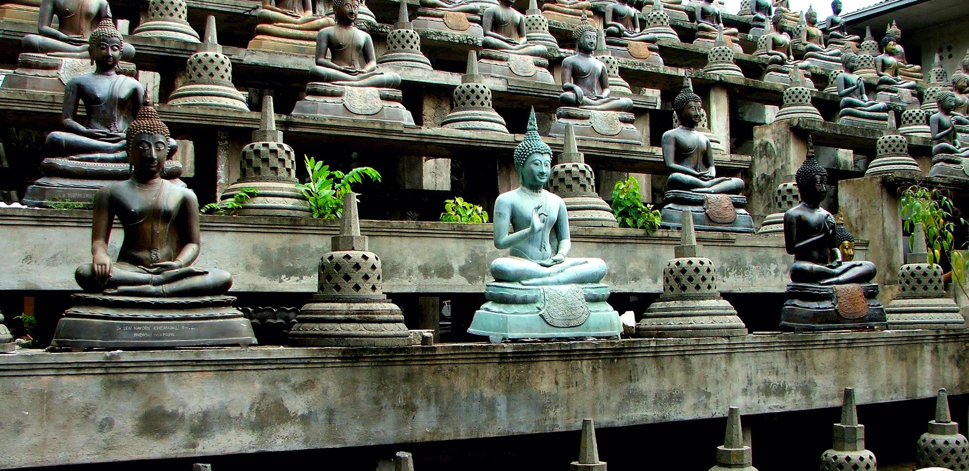 little-buddhas-1316820_edited.jpg