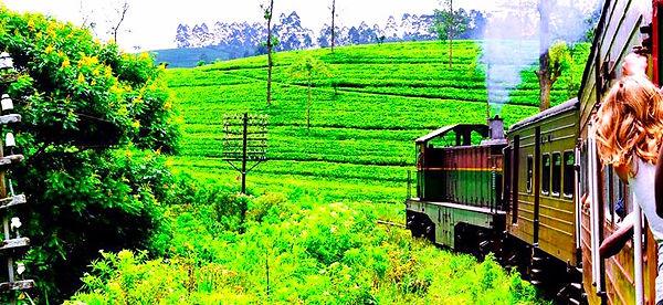 Train Journey to Ella