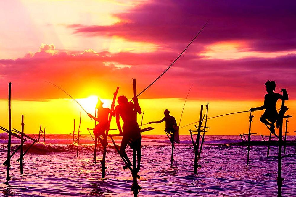 Stilt-fishermen-in-Weligama_edited.jpg