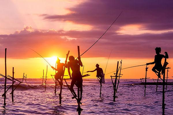 Stilt-fishermen-in-Weligama.jpg