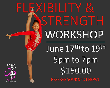 Flexibility Workshop 2.png