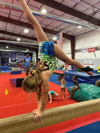 girls gymnastics.jpg