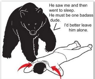bear attack sleep