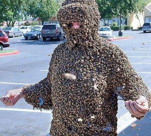 Bee man microbiome