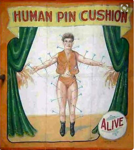 human pin cushion circus