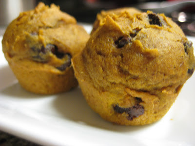 Organic Pumpkin Chocolate Chip Muffins – High Protein/Fiber + Low Sugar