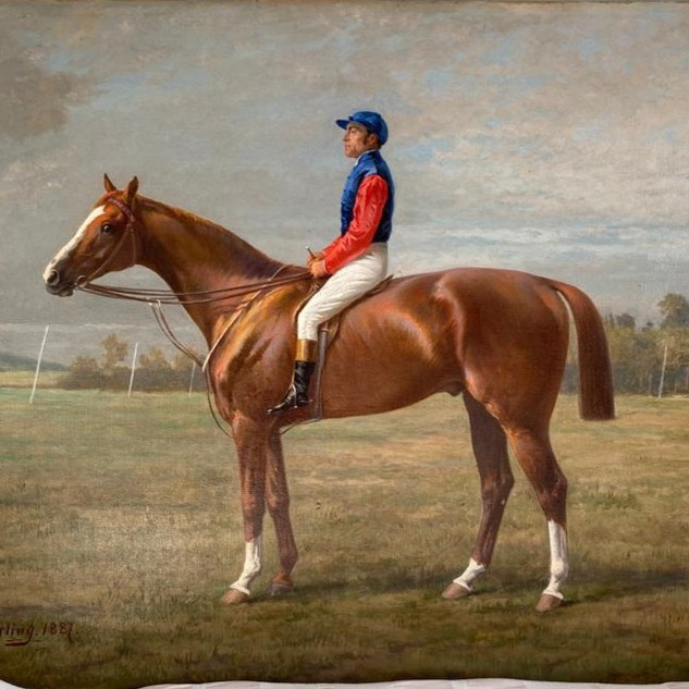 very attractive racehorse and Jockey painting