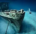 uss-kittiwake-shipwreck-bug.jpg