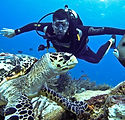 Where-to-go-scuba-diving-in-Cancun-Aquaw