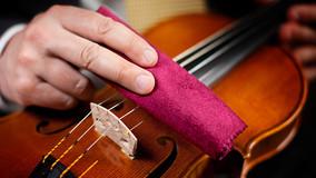 抗疫指南小提琴篇