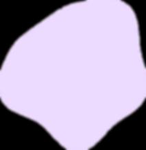 Vector (11).png