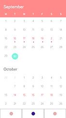 Calendar - month copy.png