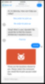 chatbot screen 2.png