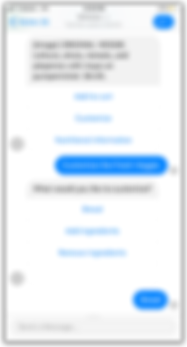 chatbot screen.png