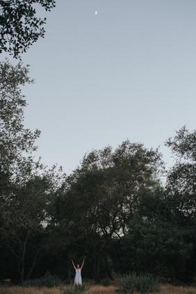 1H6A0230.jpg
