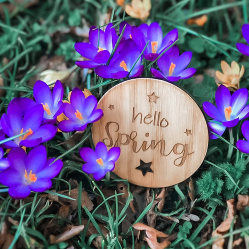Hello Spring Disc 2 sizes, Wooden Photography Props