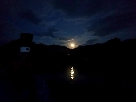 How Moonlight Kayaking Left Me Up Sh*T Creek Without A Paddle!