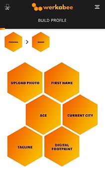 Werkabee build profile