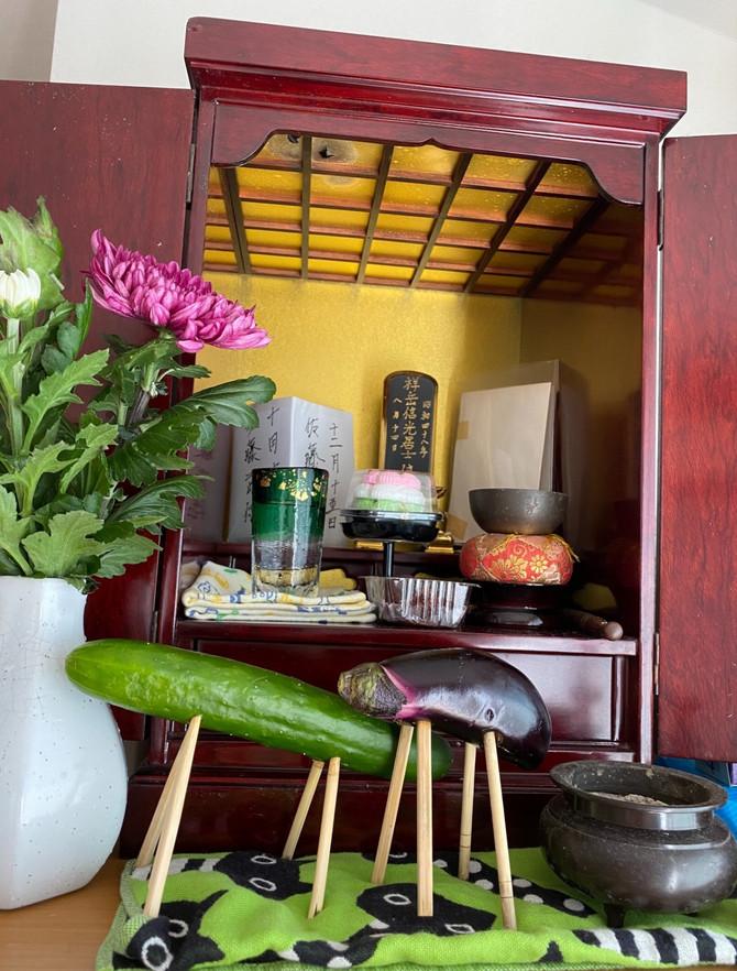 お茄子と胡瓜でお迎えを作り~供養です。