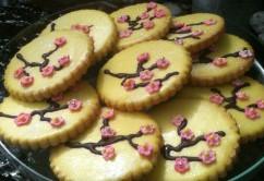 Round decorated sugar cookies