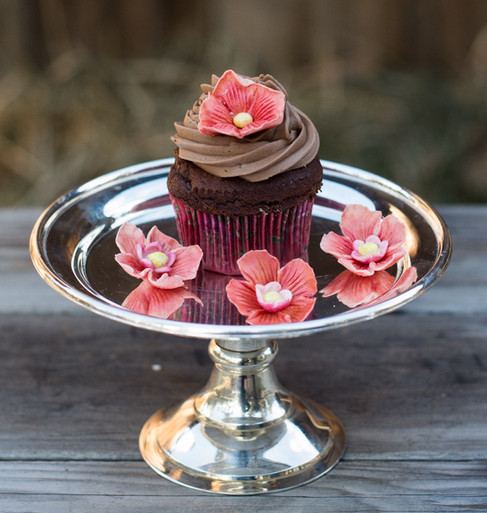 Chocolate cupcake with pink blossoms