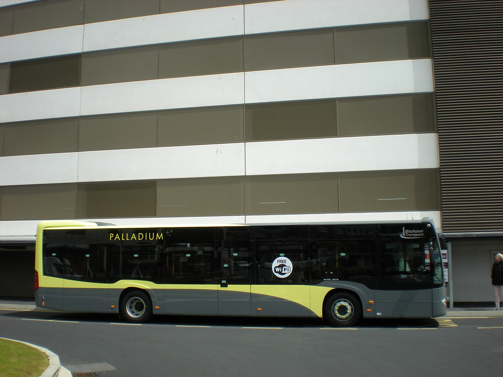 NEW NUMBER 5 BUSES 31 MAY 009.JPG