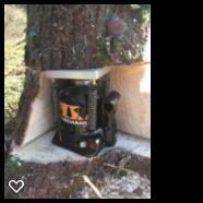 treemans working 2
