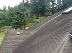 Gutter Cleaning Bellingham WA Roof Cleaning