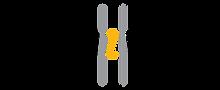 Browzwear logo.png