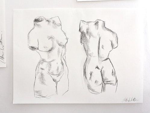 Torso study // Lockdown Sketches