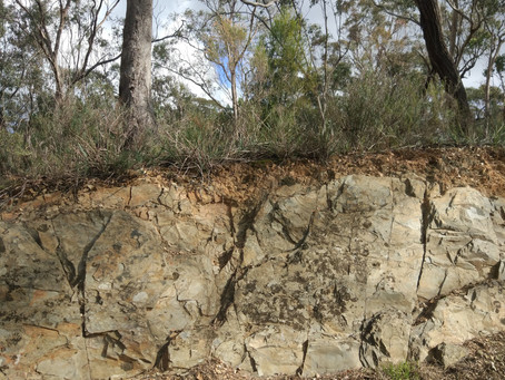 Soils of the Goldfields: A Landcare Perspective