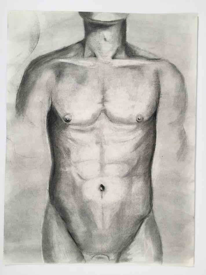 Untitled (torso)
