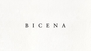 Bicena - Visual Design