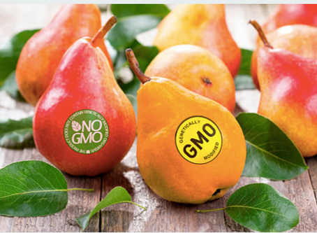 """Purdue University Sees What a """"Ban"""" on GMOs Would Look Like"""