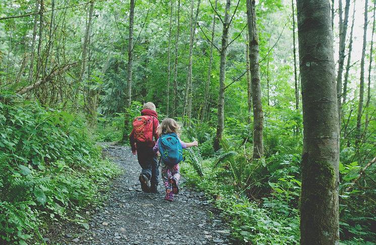 COMMUNITY FOREST TRAIL.jpg