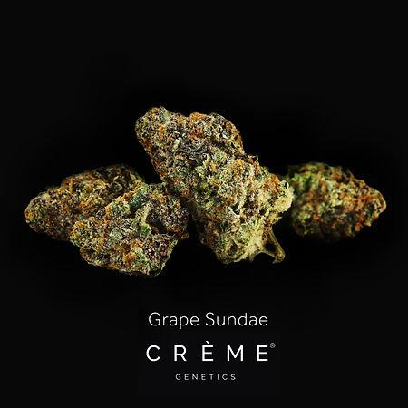 CREME Grape Sundae Black Background.jpg