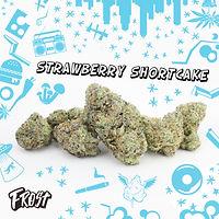 Frost Strawberry Shortcake Flower Image