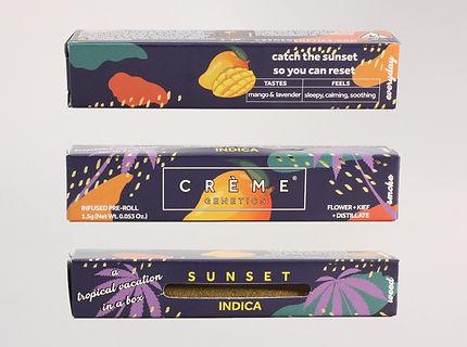 Crème Tropical Mango Cone