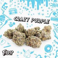 Frost Crazy Purple Flower Image