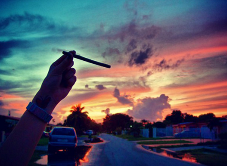 STONERS GUIDE TO THE PERFECT SUMMER
